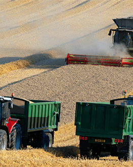 Tips for a Safe and Successful Harvest Season